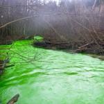 Goldstream River, Kanada mysteriózne svetlozelená, január 2011